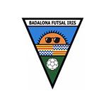 logo_bfi-150